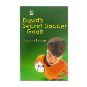 David's Secret Soccer Goals main image